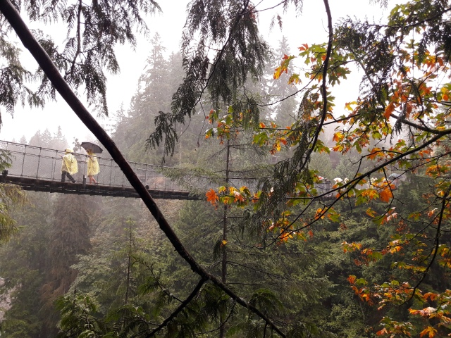 capilano, capilano suspension bridge, vancouver, canada tourism, things to do in vancouver, travel blog, cabin crew blog, flight attendant blog