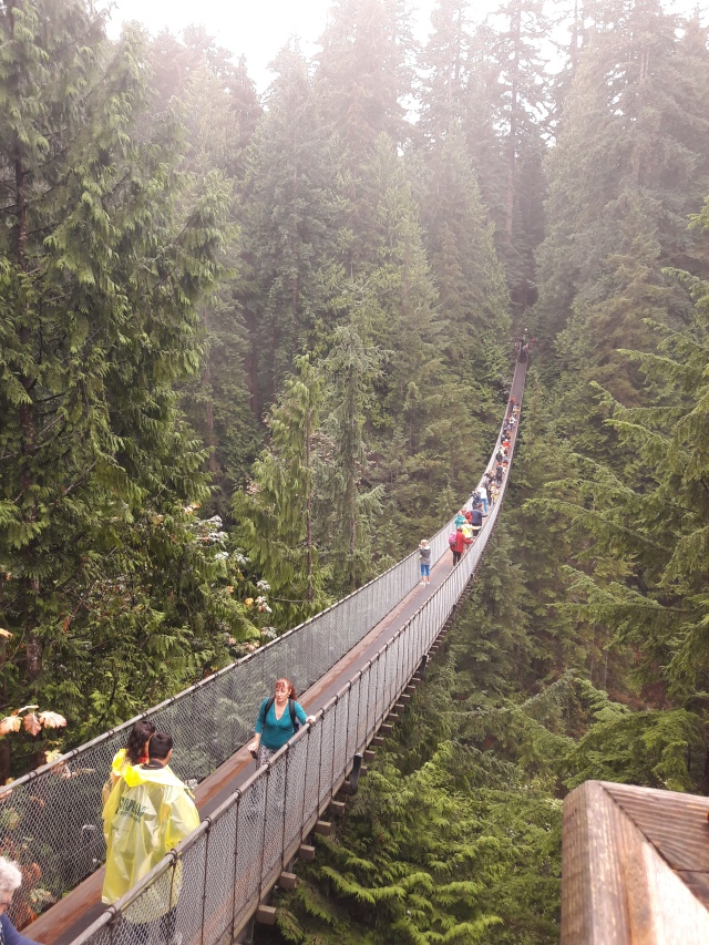 capilano suspension bridge, capilano, vancouver, canada, cabin crew blog, travel blog, flight attendant blog