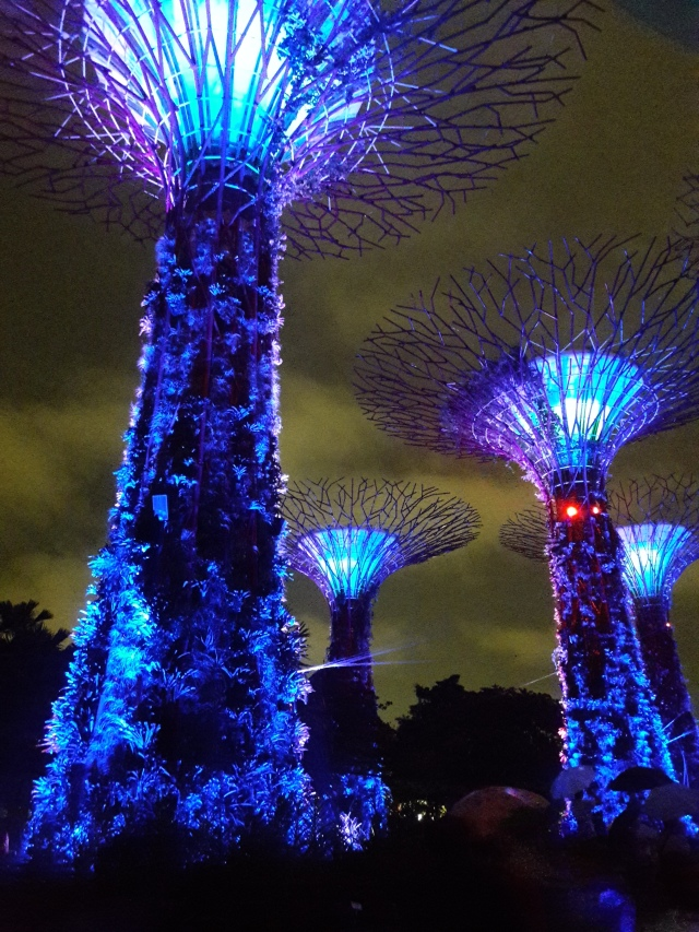 gardens by the bay, supertree grove, singapore, travel blog, cabin crew blog, flight attendant blog