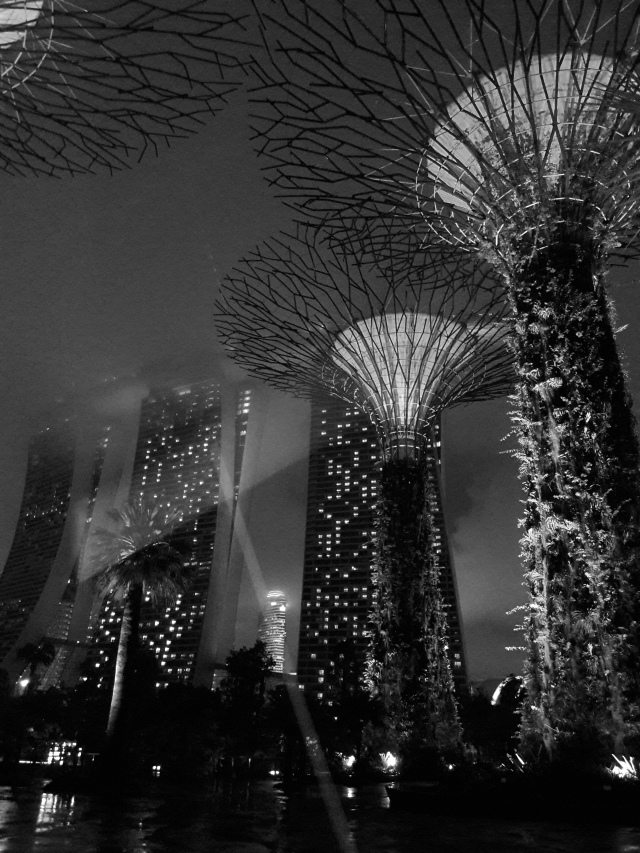 gardens by the bay, marina bay sands, supertree grove, singapore, travel blog, cabin crew blog, flight attendant blog